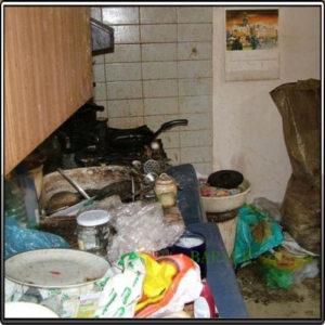 антисанитария в квартире и тараканы